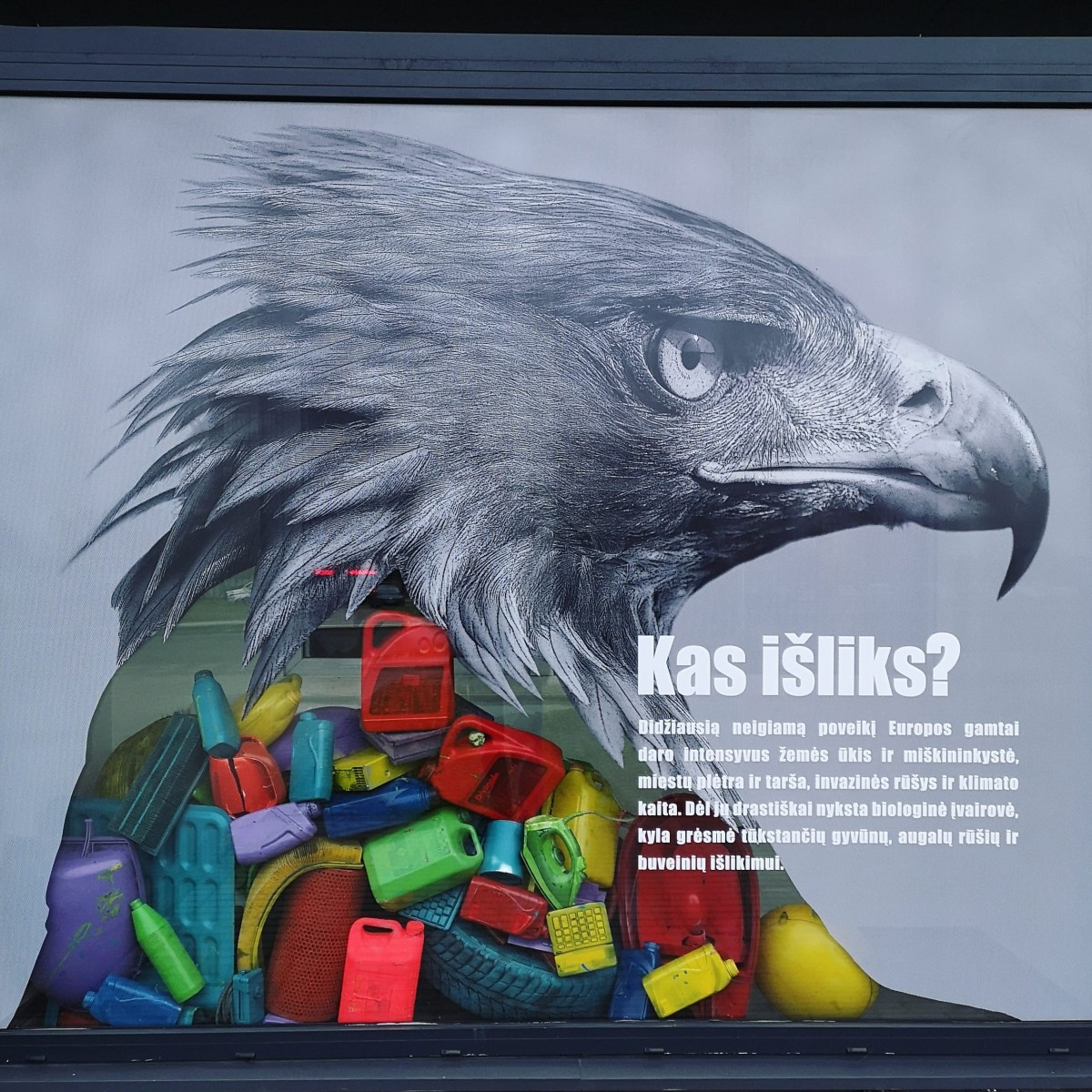A creatively designed showcase in Kaunas is like a cry of disappearing nature for help